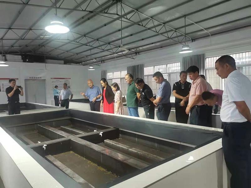 中国医院协会及陆川县有关领导到基地调研考察