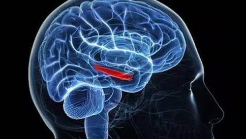 得了脑血栓应该如何治疗