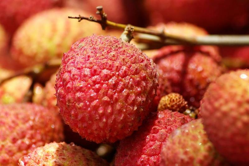 细数养肝的几种水果