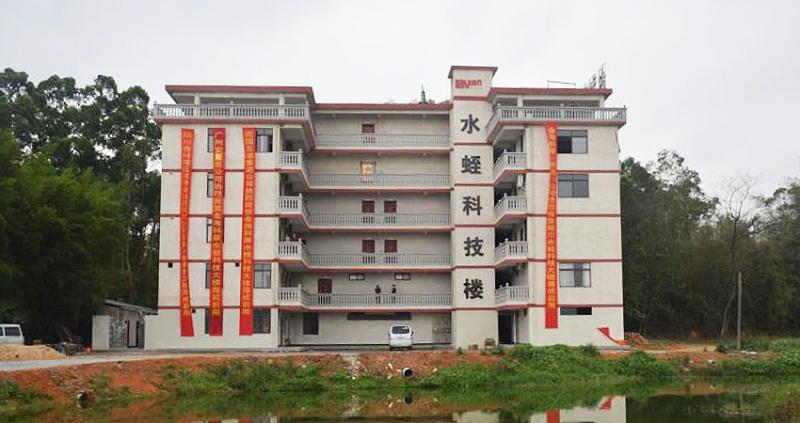 陆川水蛭科技大楼