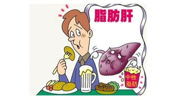 盘点一些关于脂肪肝的误区