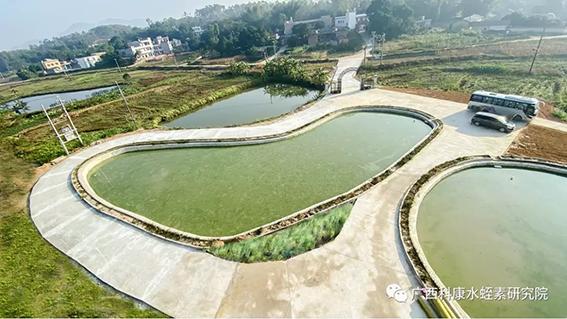水蛭素养殖基地