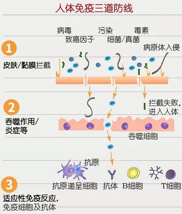 水蛭素、新冠肺炎、钟南山