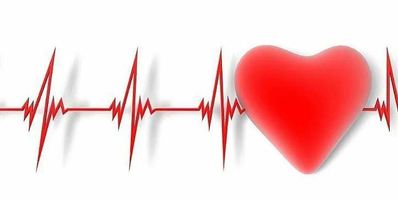 水蛭素、脑梗、心梗