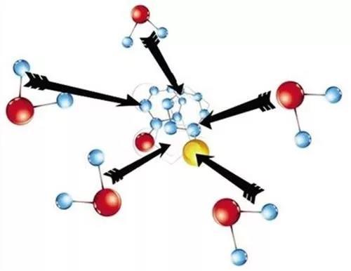 水蛭素,新型冠状病毒。肺炎