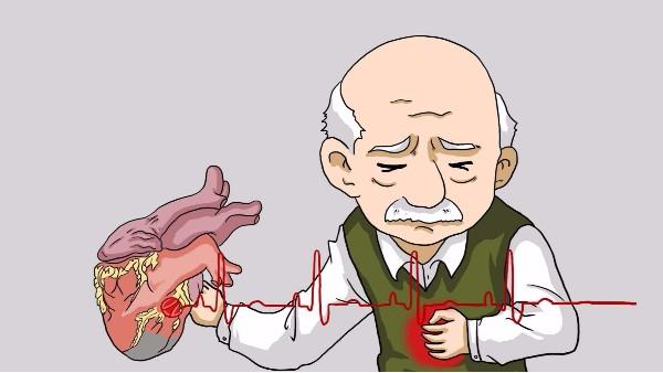 水蛭素如何改善心肌缺氧、冠心病及心梗