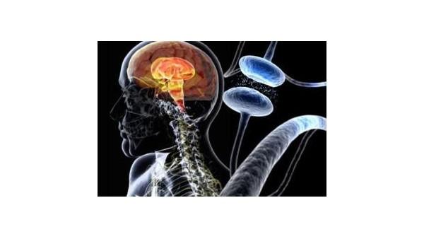 帕金森病不是老年痴呆,科普帕金森症状