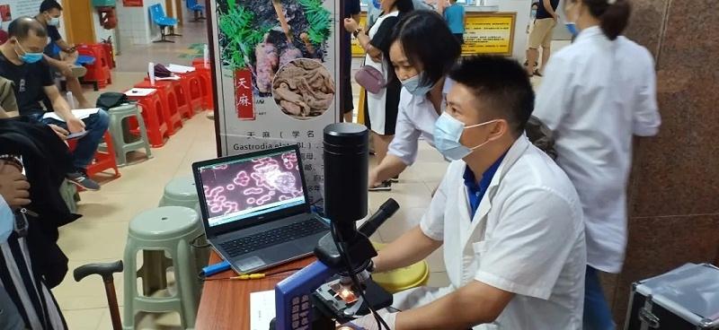 水蛭素、中医院、医用水蛭活体疗法