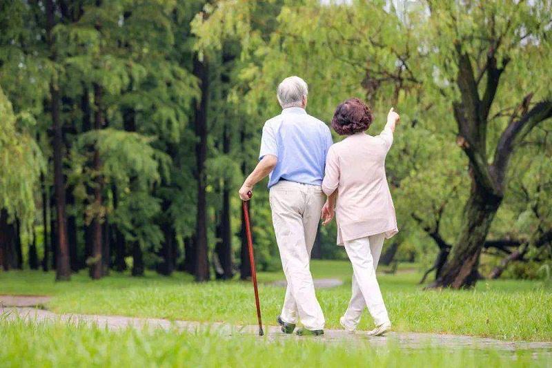 老年人应该注意哪些养生保健知识呢