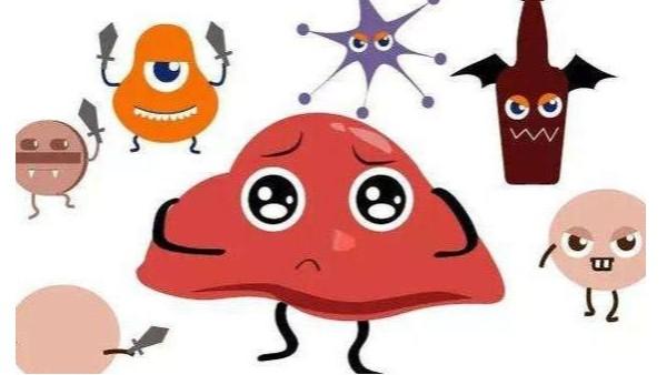 想要给肝脏排毒应该如何吃呢