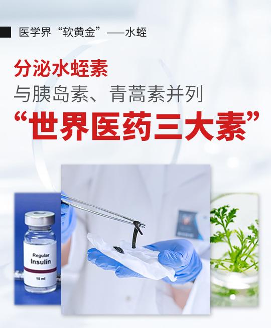 科康keyken天然水蛭素