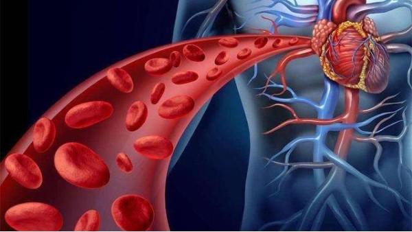 胆固醇高的症状及危害
