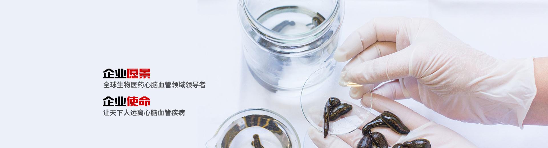 中国天然水蛭素专项研发生产-金海科康