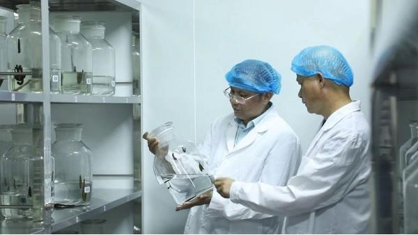 科康科技集团以匠心之作赢领医药行业未来