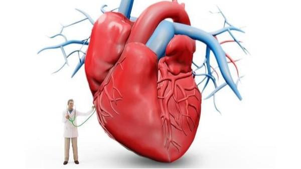 最新心血管病调查:10个人里就有1个是高危人群!