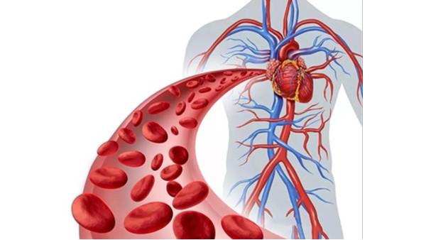 人与血管同寿,你给你的血管洗过澡了吗!