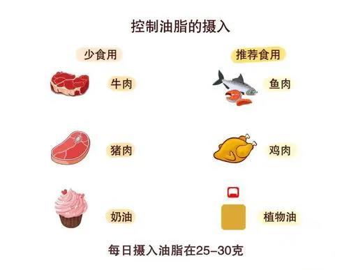 水蛭素、高血脂、动脉硬化