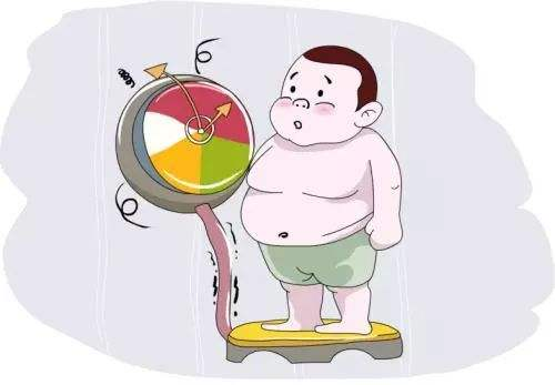 这些食物多吃能改善肥胖
