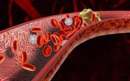 人体的血液粘稠有哪些危害