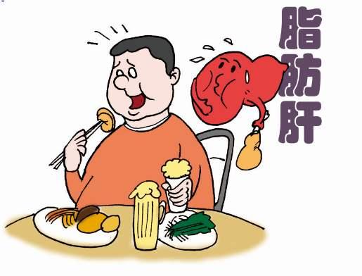 脂肪肝患者不用怕,这种东西能抑制脂肪肝