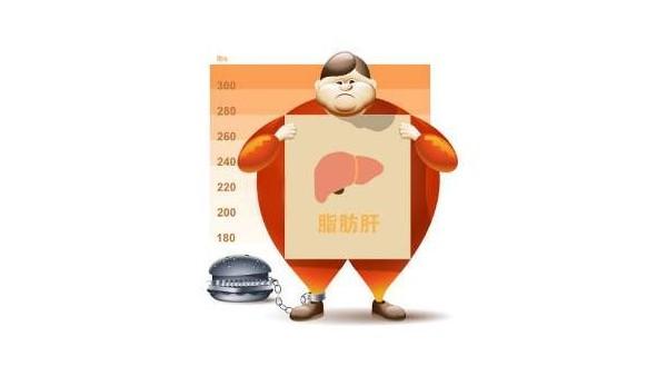 哪些人更容易患上脂肪肝