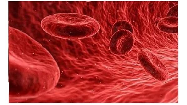 科普知识分享第一弹:血管里流淌的细胞