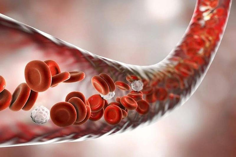 这些行为加速你的血管老化