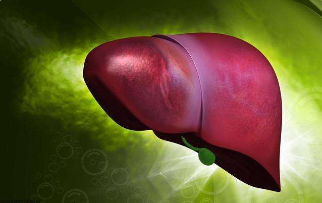 肝脏不好,容易衰老,我们要如何养肝