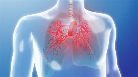 秋季应该如何健康的养肺