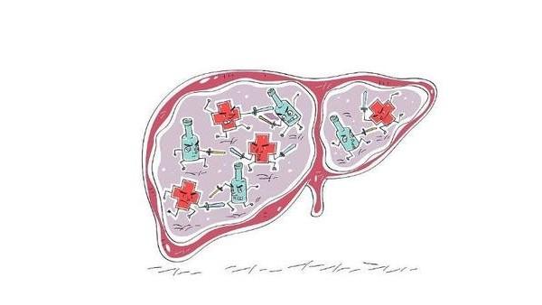 坚持做这些事情,让你肝脏健康干净